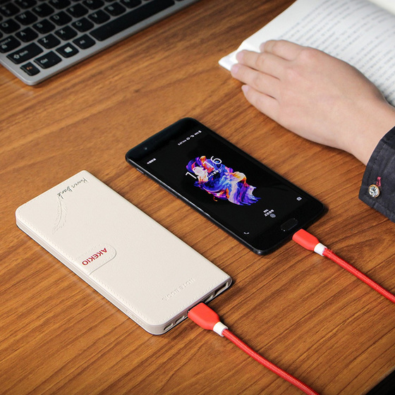 Universal Akekio Power Bank Extern Akku 8000 mAh