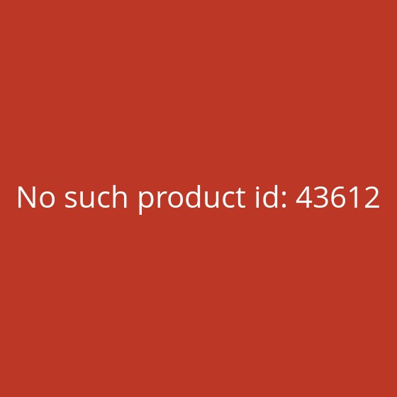 Xiaomi Mi Power Bank 2S 10000mAh Silber